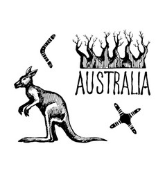 Australia symbols and signs vector
