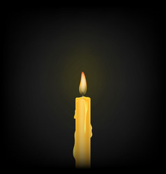Burning candle on a black background vector