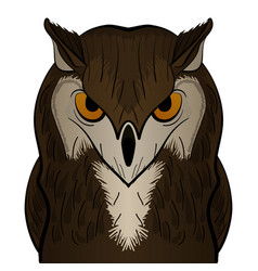 Cartoon clip art owl mascot vector