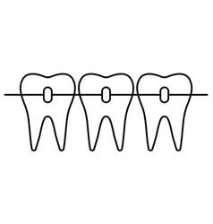 Dental braces icon orthodontic teeth alignment vector