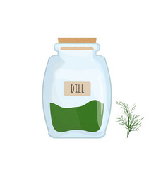 dried dill stored in glass jar isolated on white vector image