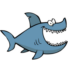 little shark vector image