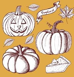 Sketch set of pumpkins vector image