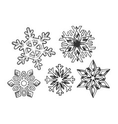 Snowflake set engraving vector