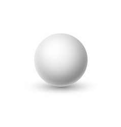 white sphere isolated on background vector image