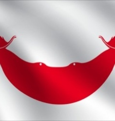 Easter Island Rapa Nui flag vector image vector image