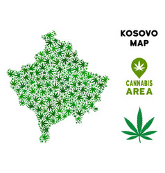 Cannabis collage kosovo map vector