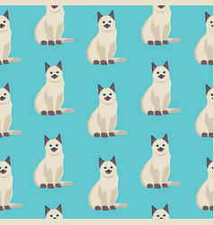 cat seamless pattern cute white kitten in vector image