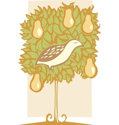 Partridge and Pear Tree vector image