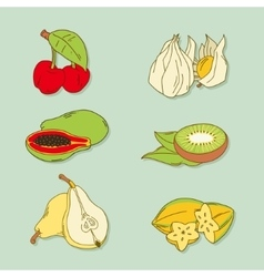Set of hand-drawn tropic fruits vector