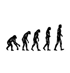 Theory evolution of man from monkey to man vector