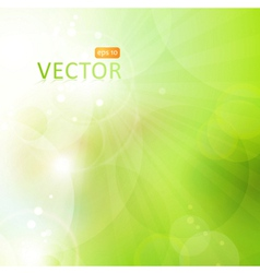 Abstract green bokeh background with lights vector image