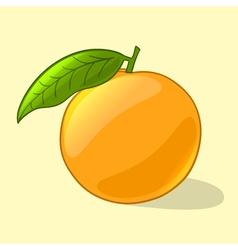 Orange in cartoon style vector image vector image