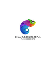 chameleon colorful design concept template vector image