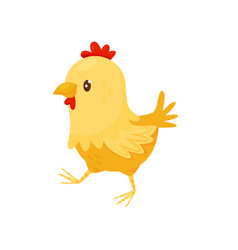 Cute yellow chicken with red scallop little farm vector