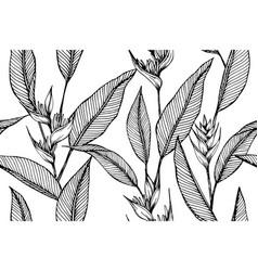 hawaiian flower tropical leaves pattern seamless vector image