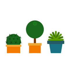 potted green flowers icon flat isolated vector image