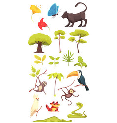 Rain forest jungle set vector