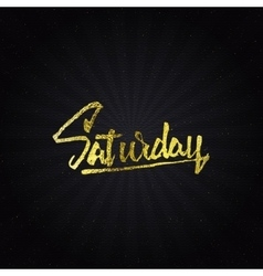 Saturday - Calligraphic phrase written in gold vector