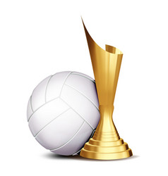 Volleyball game award volleyball ball vector