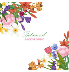 wedding invitation floral bridal flowers vector image