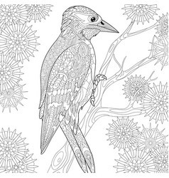 woodpecker adult coloring page vector image