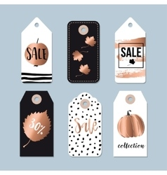 Modern set of autumn fall sale and quality labels vector image