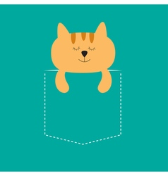 Cat sleeping in the pocket Cute cartoon character vector