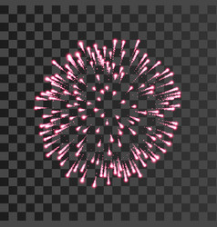 Firework pink bursting isolated transparent vector