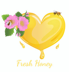 Heart honey with wild rose flowers and a bee vector