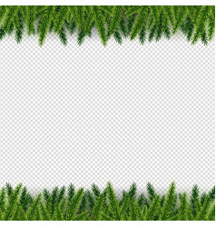 Isolated firtree frame isolated background vector