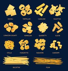 Italian pasta types cuisine objects vector