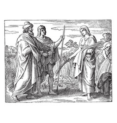 Ruth gleaning in fields boaz vintage vector