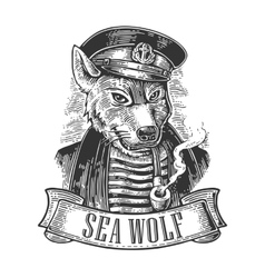 Sea wolf with pipe and ribbon vector