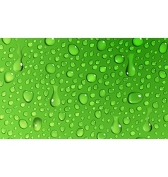 Background of water drops vector
