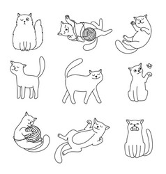 cats line doodles vector image