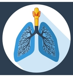 Flat design icon of human lungs vector