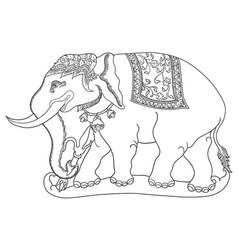 Gajah sena vector