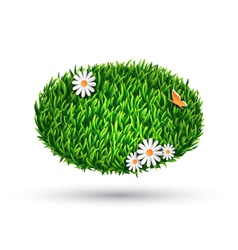 Green grass oval with chamomiles and butterfly vector image