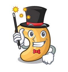 Magician roasted cashew nuts isolated on mascot vector
