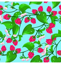 raspberry seamless vector image vector image