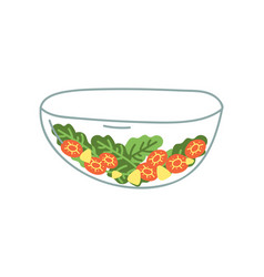 transparent glass salad bowl fresh vegetables vector image