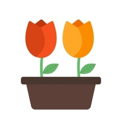 Tulips in Pot vector image
