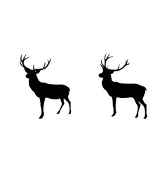 set black and white deer with horns isolated on vector image