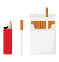 Cigarette pack and lighter vector image