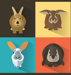 easter bunny collection vector image