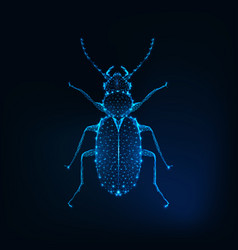Glowing low polygonal june bug isolated on dark vector