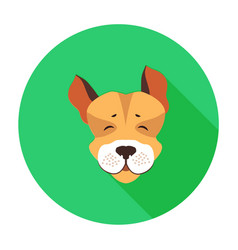 Happy muzzle of jack russell terrier flat icon vector