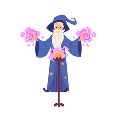 old wizard and magician man with hat and beard vector image