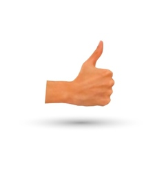 photorealistic thumb-up hand isolated vector image